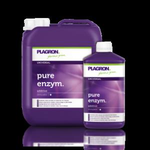 pure-enzym