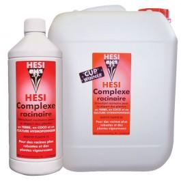 hesi-root-complex