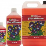 ghe_florabloom_range_1