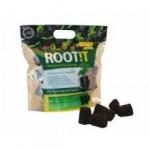 root-p50